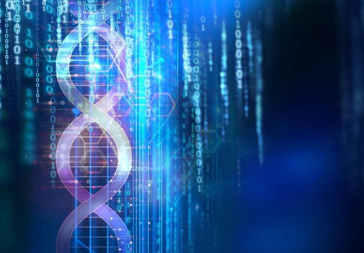 DNA硬盘,绕不过去易经模型这座山