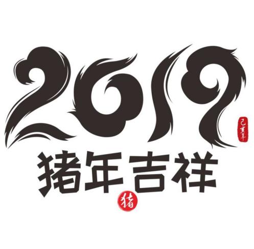 2019己亥年